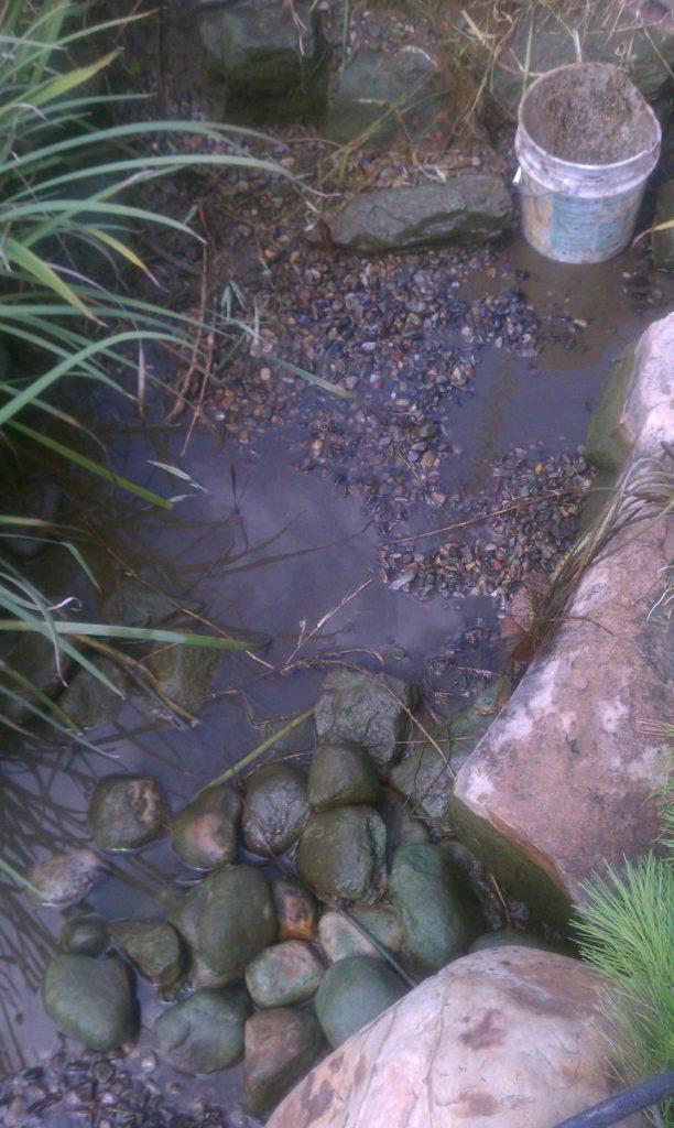 The science of water hanover koi farms for Garden pond gravel