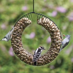 peanut wreath peanut feeder HKF